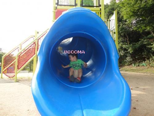 DSC00129_convert_20121020111157.jpg