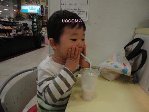 DSC00155_convert_20121030150715.jpg