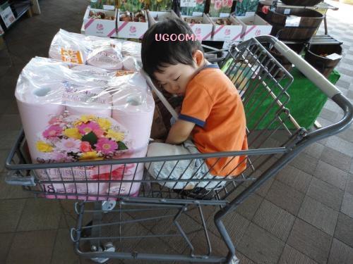 DSC00180_convert_20121030150844.jpg