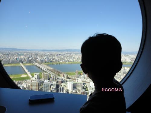 DSC00198_convert_20121101210040.jpg