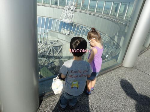 DSC00212_convert_20121101210227.jpg