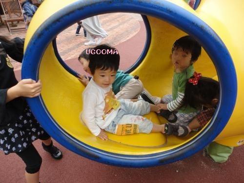 DSC00422_convert_20121106200839.jpg
