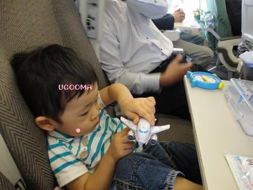 DSC00601_convert_20121113150920.jpg