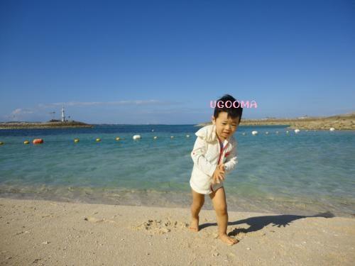DSC00688_convert_20121116140511.jpg