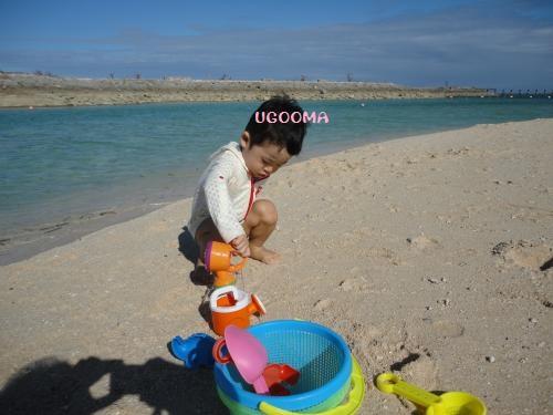 DSC00705_convert_20121027004933.jpg