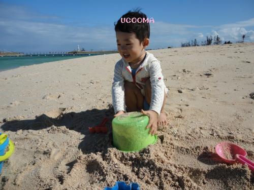 DSC00708_convert_20121116140602.jpg