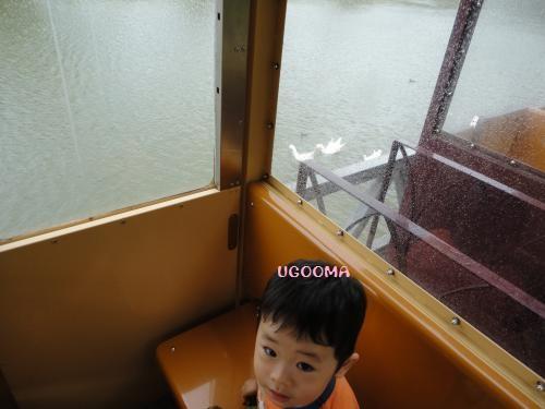 DSC00725_convert_20121116140825.jpg