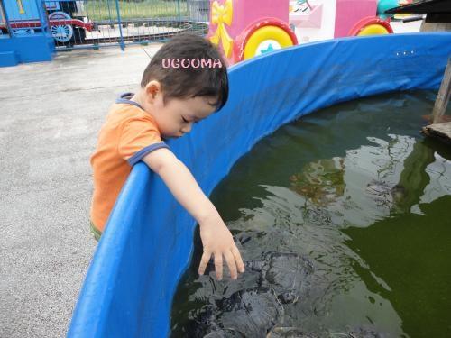 DSC00730_convert_20121116140904.jpg