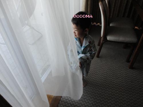 DSC00779_convert_20121124193555.jpg