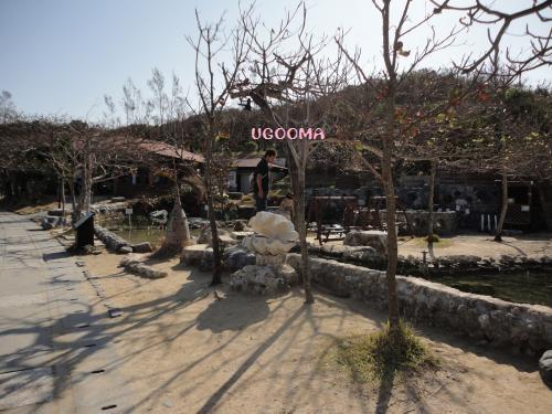 DSC00789_convert_20121124193615.jpg