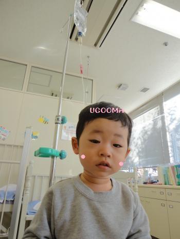 DSC00955_convert_20121201020909.jpg