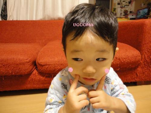 DSC00962_convert_20121201020949.jpg