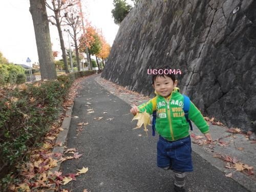 DSC00990_convert_20121201021213.jpg