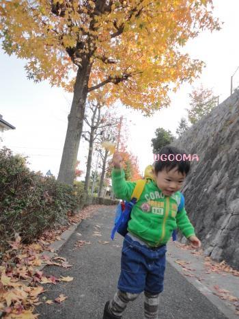 DSC00991_convert_20121201021223.jpg