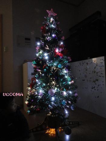 DSC01222_convert_20121223104109.jpg