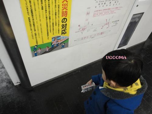 DSC01582_convert_20130104020501.jpg