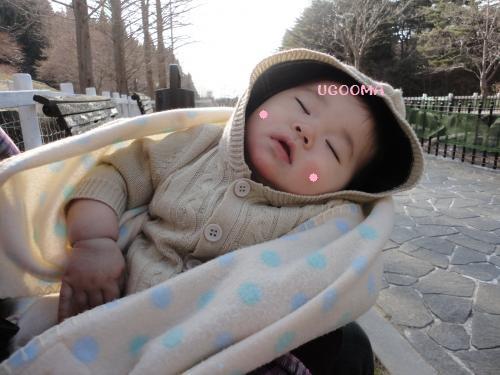 DSC03554_convert_20120910203108.jpg