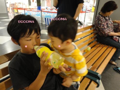DSC08475_convert_20120630104916.jpg