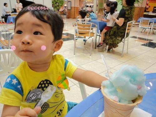 DSC08501_convert_20120630105019.jpg