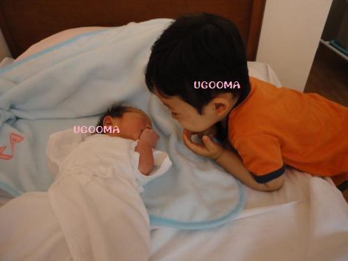DSC08557_convert_20120703141335.jpg