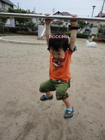 DSC08570_convert_20120703141356.jpg