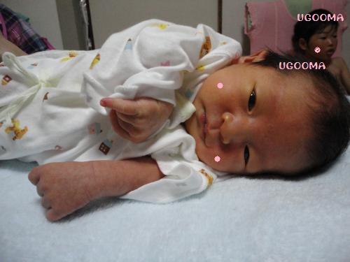 DSC08689_convert_20120707014822.jpg