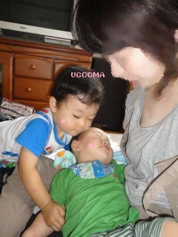 DSC08770_convert_20120708122504.jpg