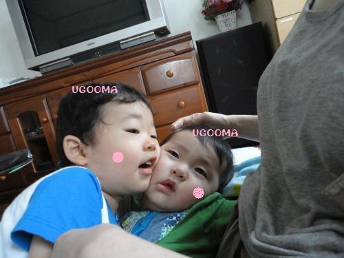 DSC08772_convert_20120708122534.jpg