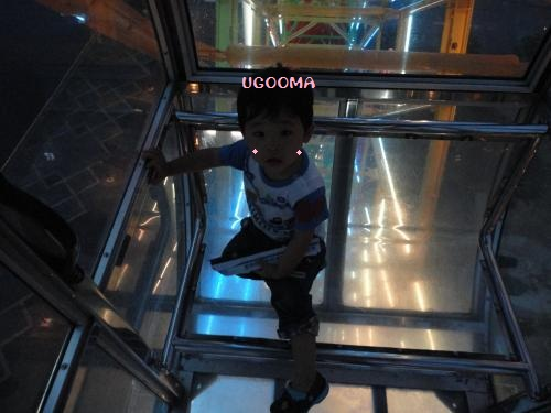 DSC08810_convert_20120708173149.jpg