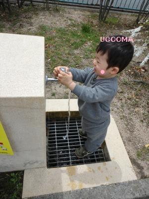 DSC08972_convert_20120502162731.jpg