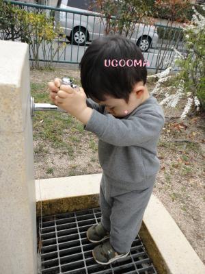 DSC08975_convert_20120502162820.jpg