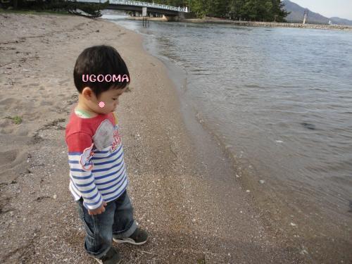 DSC09042_convert_20120507225427.jpg