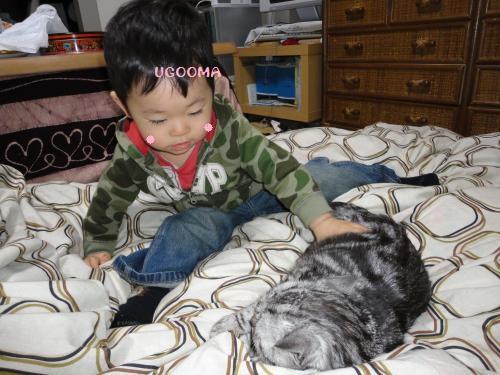 DSC09066_convert_20120507225739.jpg