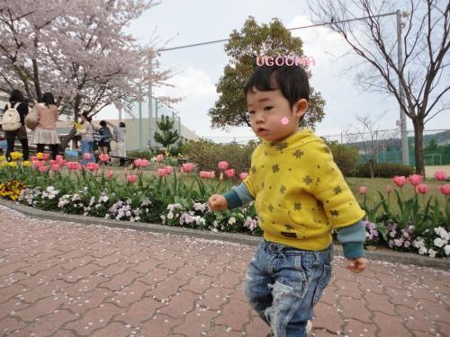 DSC09078_convert_20120511093028.jpg