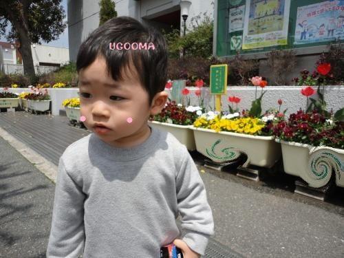 DSC09106_convert_20120516012916.jpg