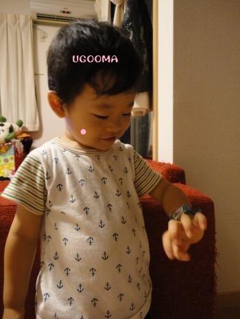 DSC09252_convert_20120803171345.jpg