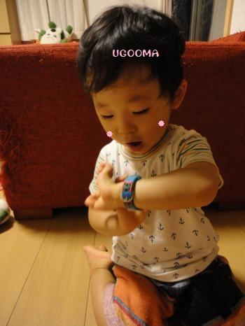 DSC09255_convert_20120803171415.jpg