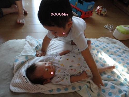DSC09373_convert_20120808020543.jpg