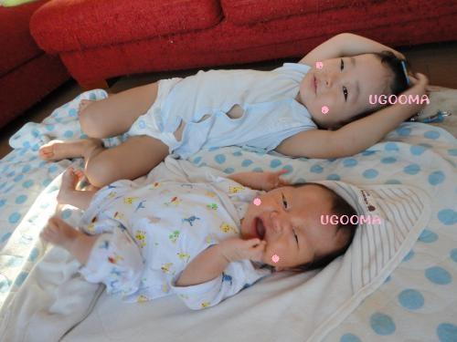 DSC09383_convert_20120808020707.jpg