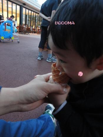 DSC09411_convert_20120526113633.jpg