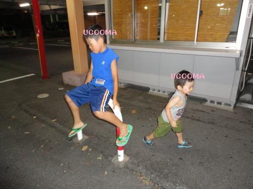 DSC09538_convert_20120815031731.jpg