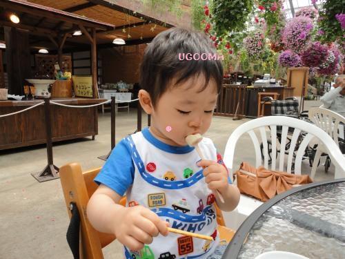 DSC09557_convert_20120509010901.jpg