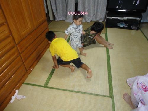 DSC09585_convert_20120817111341.jpg
