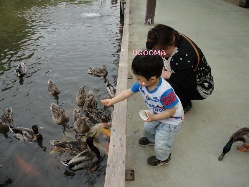 DSC09624_convert_20120531185825.jpg