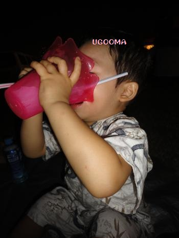 DSC09639_convert_20120817111504.jpg