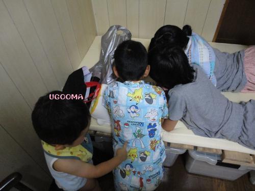 DSC09648_convert_20120817111533.jpg