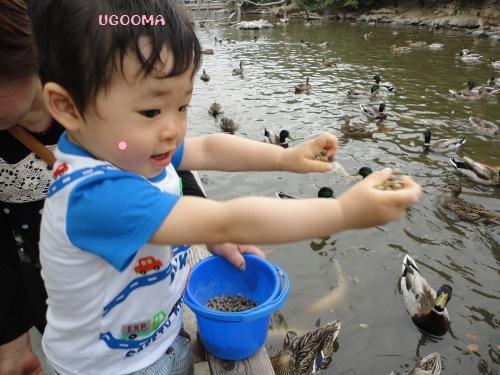 DSC09669_convert_20120509010340.jpg