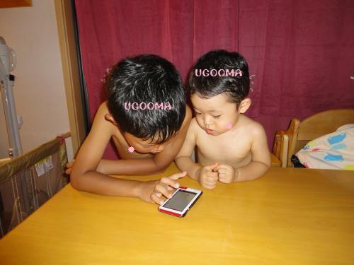 DSC09713_convert_20120907131527.jpg