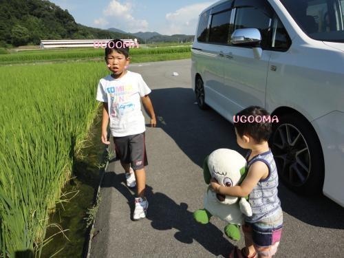 DSC09801_convert_20120914163310.jpg