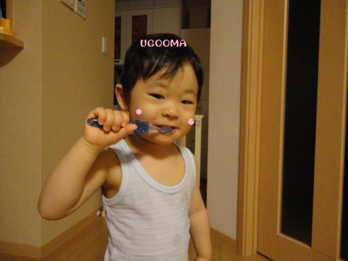 DSC09882_convert_20120611015732.jpg